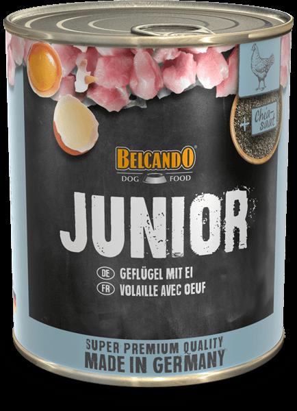 Belcando-Dose-Junior-800g